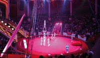 Zirkus-Teamevent in Rostock